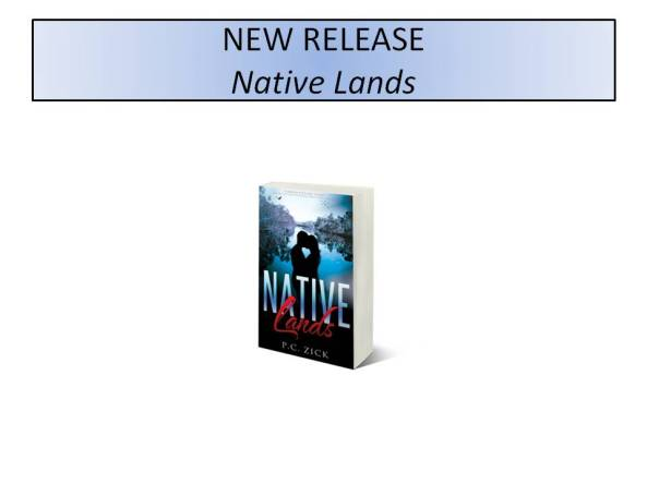 NEW RELEASE – FLORIDA FICTION SERIES