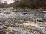 Suwanee River - Florida's only whitewater