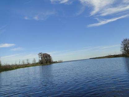 Lochloosa Lake from Cross Creek